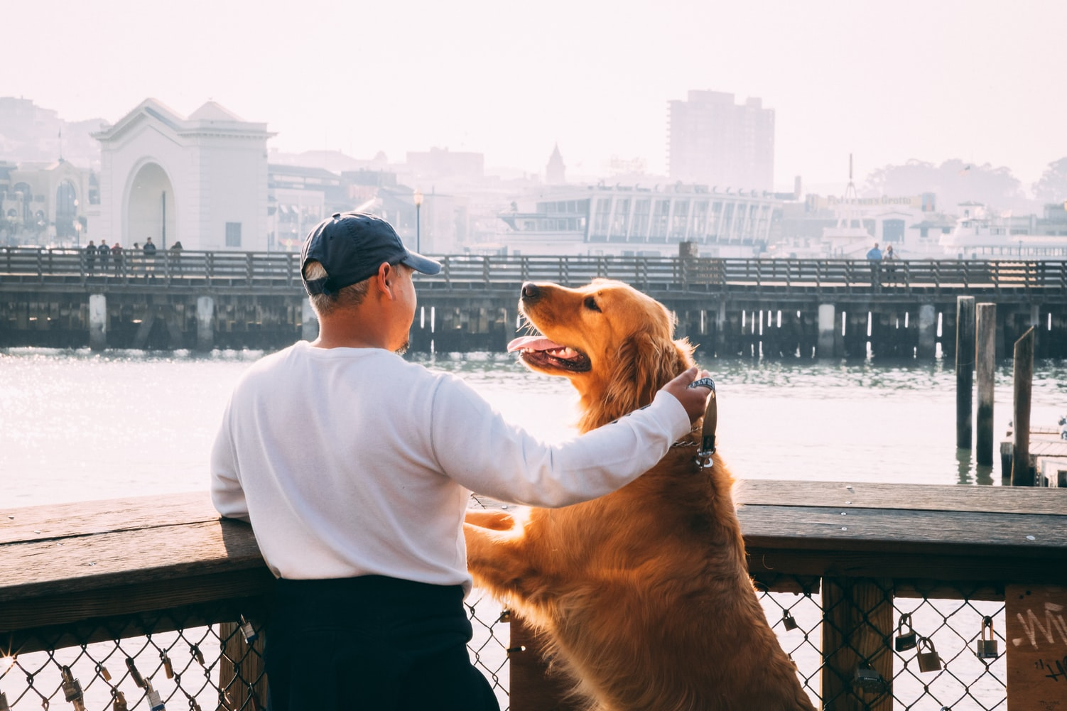 Man standing with dog looking out at water
